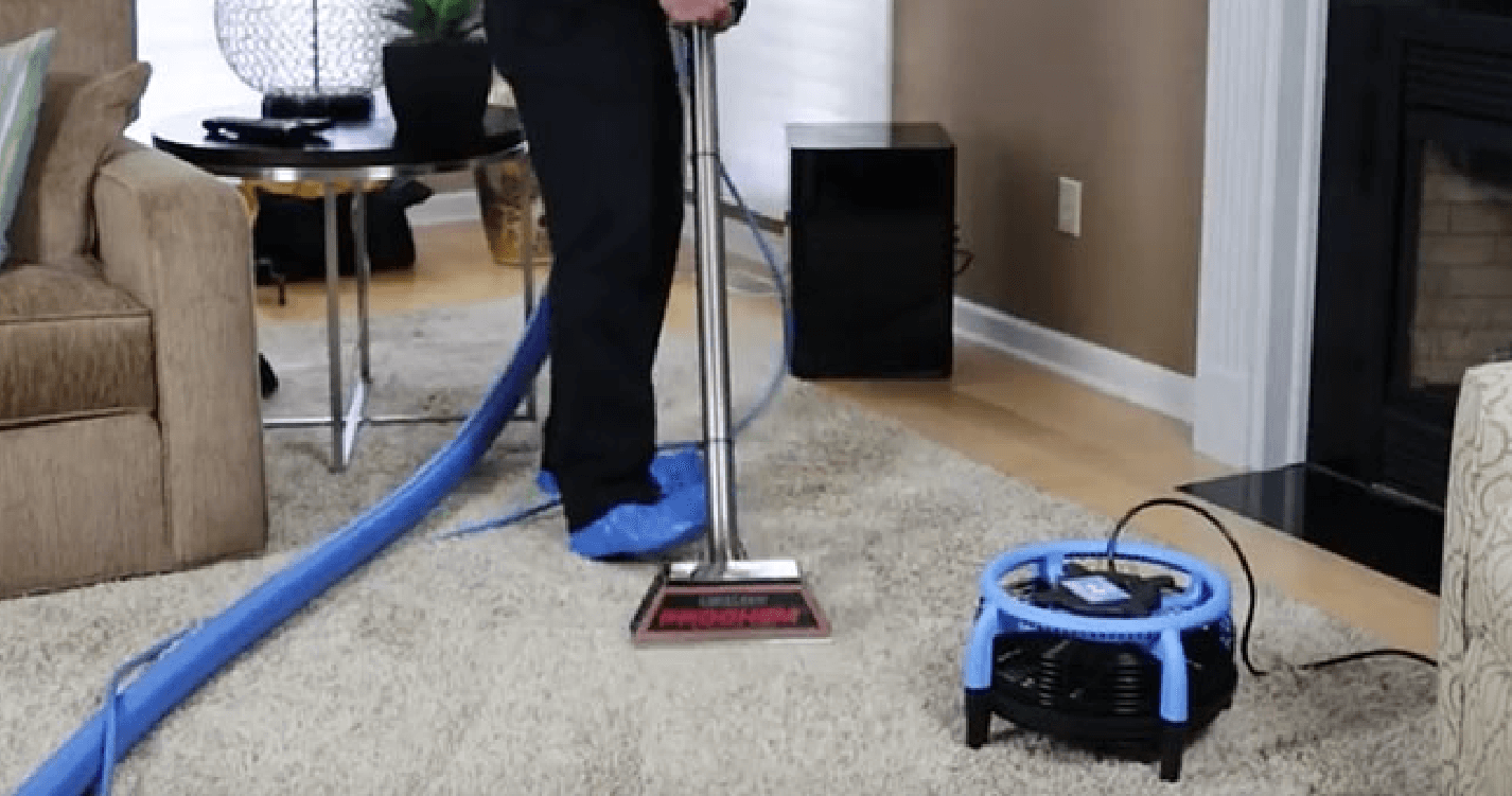 Professional Steam Carpet Cleaning